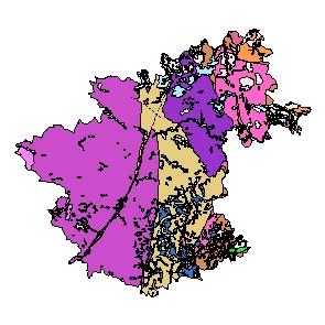 Kartographisches Modell 1:200.000 Zwettl - Geologie (Pol.Bez. 325)
