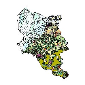 Kartographisches Modell 1:200.000 Dornbirn - Geologie (Pol.Bez. 803)