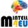 Mineral Intelligence for Europe