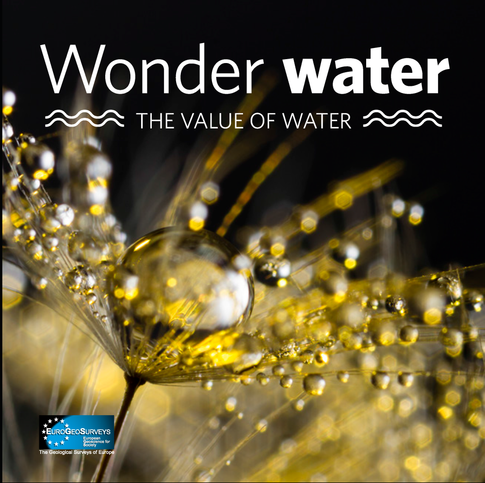 Wonder water – The value of water